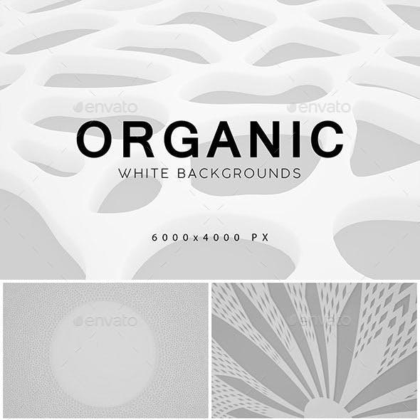White Organic Backgrounds 2