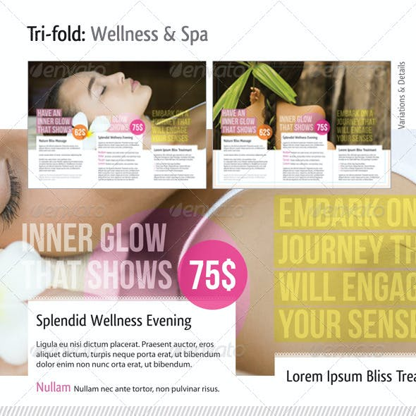Tri Fold Brochure Template (Bundle)