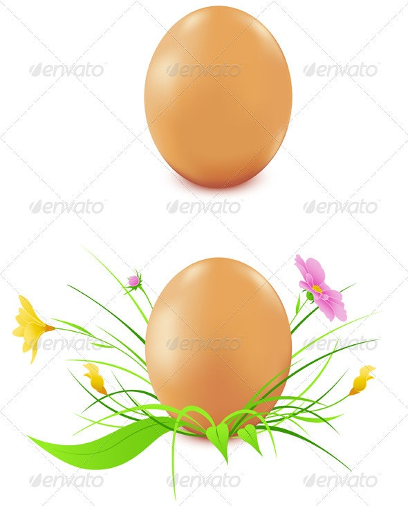 Hen's Eggs with Flowers - Flowers & Plants Nature
