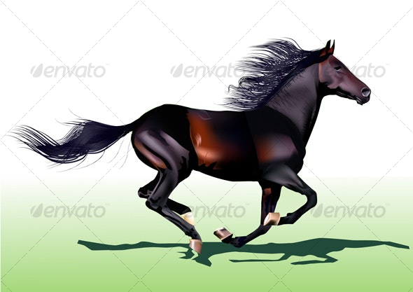 black horse  - Animals Characters