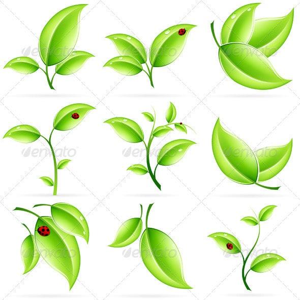 Fresh Green Leaves Set - Organic Objects Objects