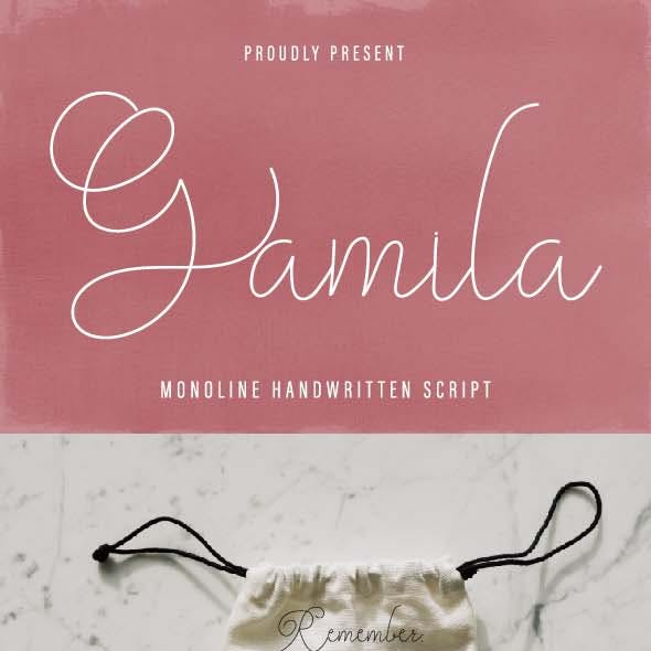 Gamila Thin Font