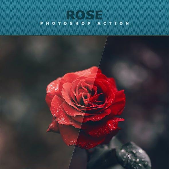 Rose Photoshop Action