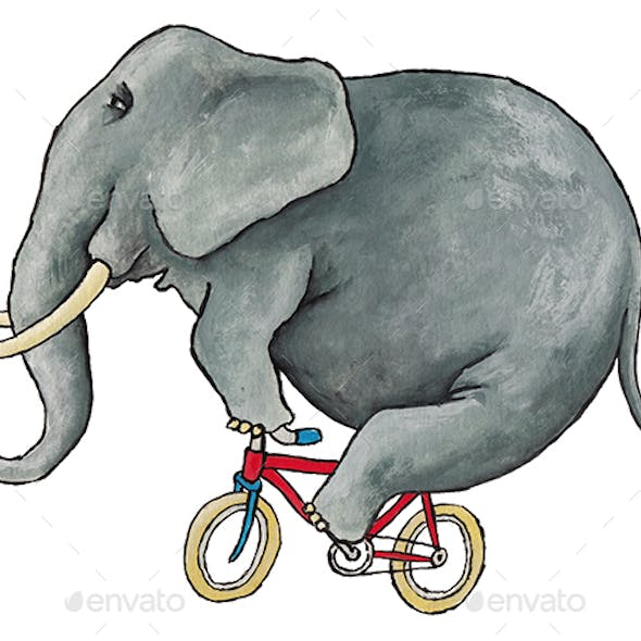 Elephant on a Bicycle