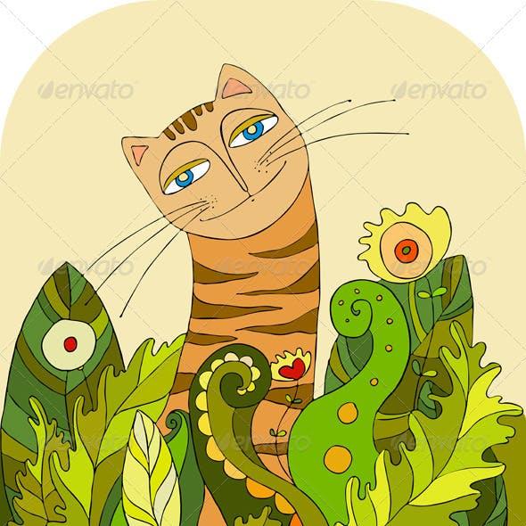 Cat Head Grass