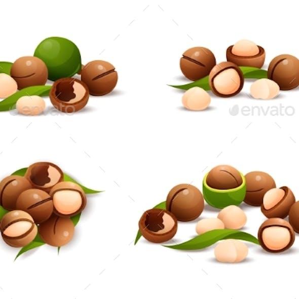 Macadamia Nut Compositions Set