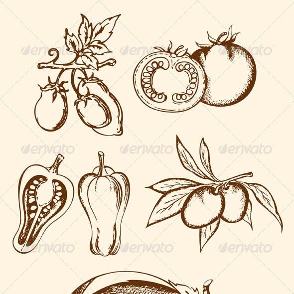 Set of Vintage Vegetable Icons
