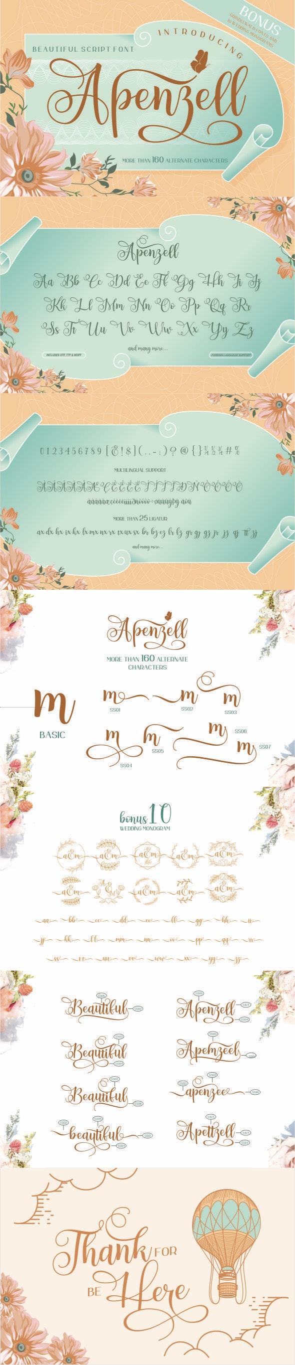 Apenzell Script | 2 font - Calligraphy Script