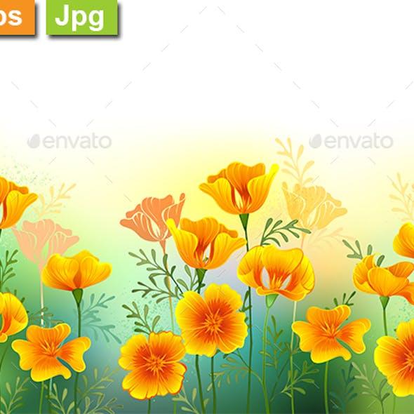 Background with California Poppy