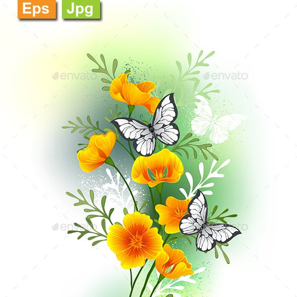 California Poppy with Butterflies