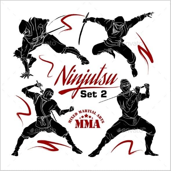 Ninja Warriors Set