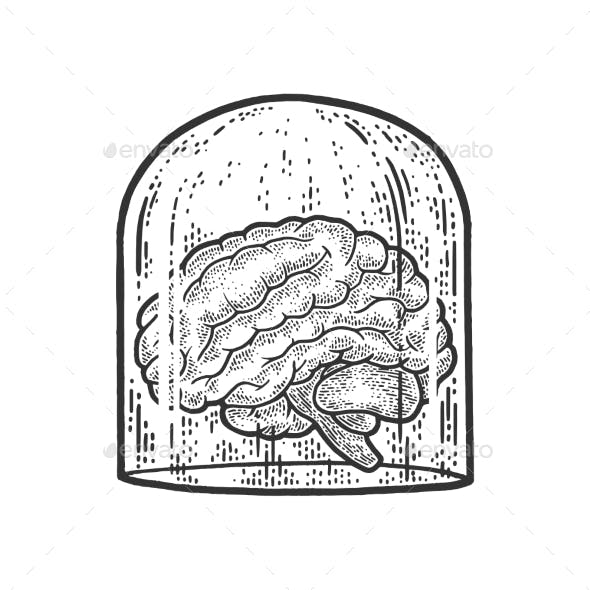 Human Brain Under Glass Cover Sketch Vector