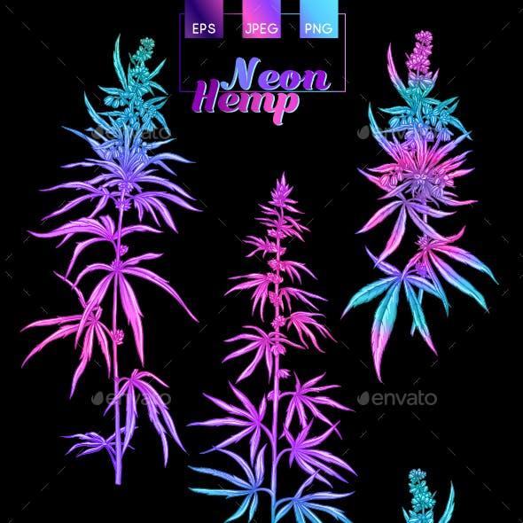 Hemp Cannabis Plant