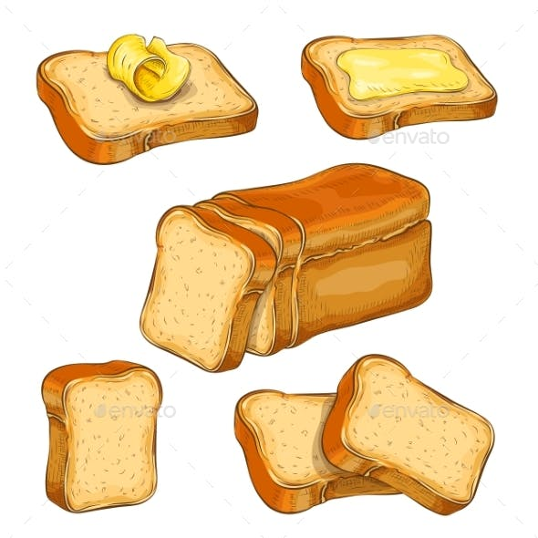 Set of Wheat Sliced Bread and Toasts Illustration