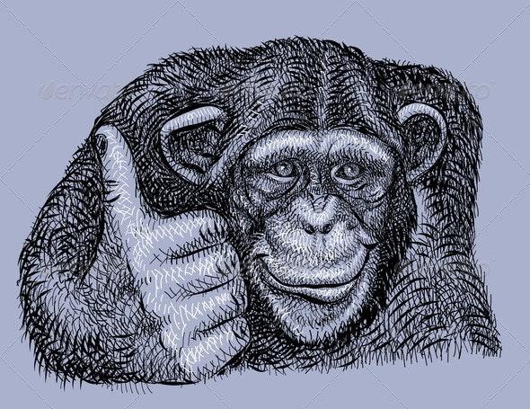 Chimpanzee drawing vector - Animals Characters