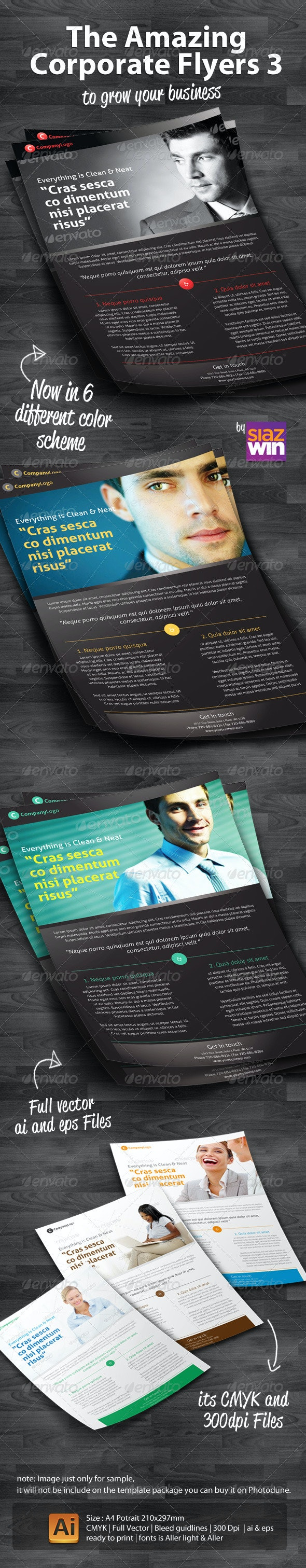 The Amazing Corporate Flyers 3 - Corporate Flyers
