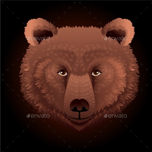 Placeit - Bear Wild Animal Face.