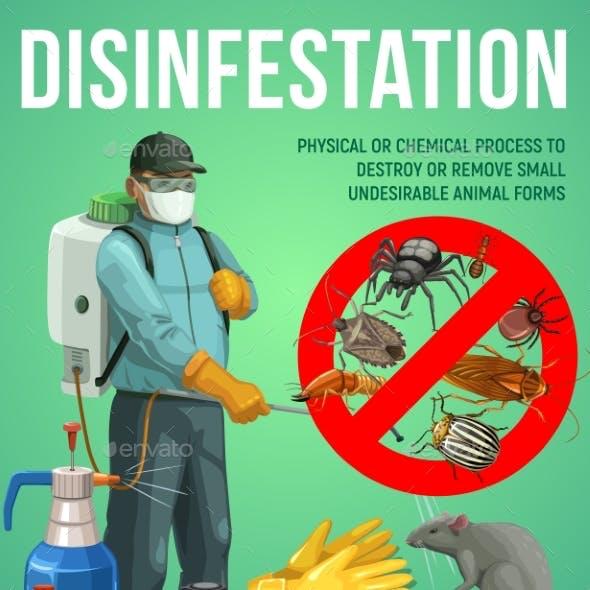 Disinfestation Service, Pest Control, Deratization