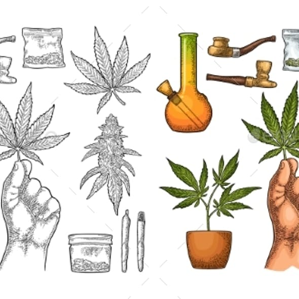 Set of Marijuana