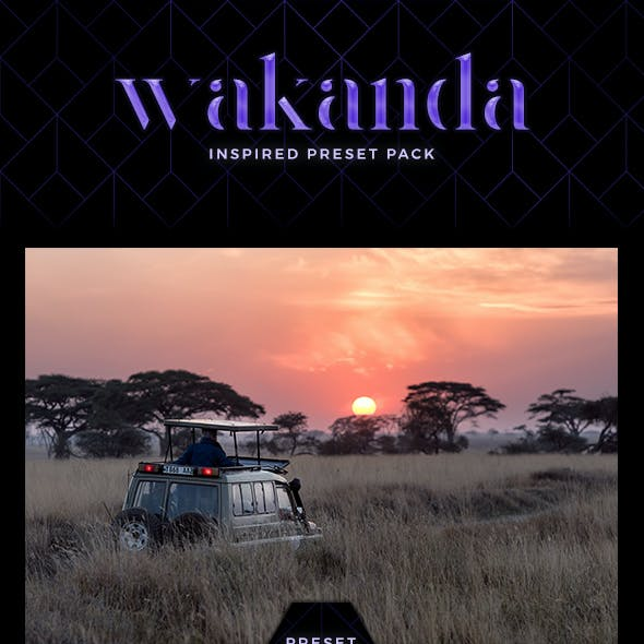 7 Cinematic Lightroom Presets - Wakanda Inspired Pack (+ Mobile Version)
