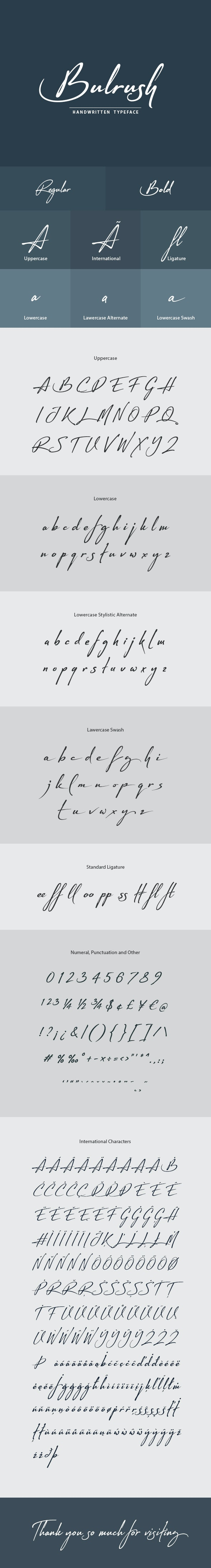 Bulrush Handwritten Font - Hand-writing Script