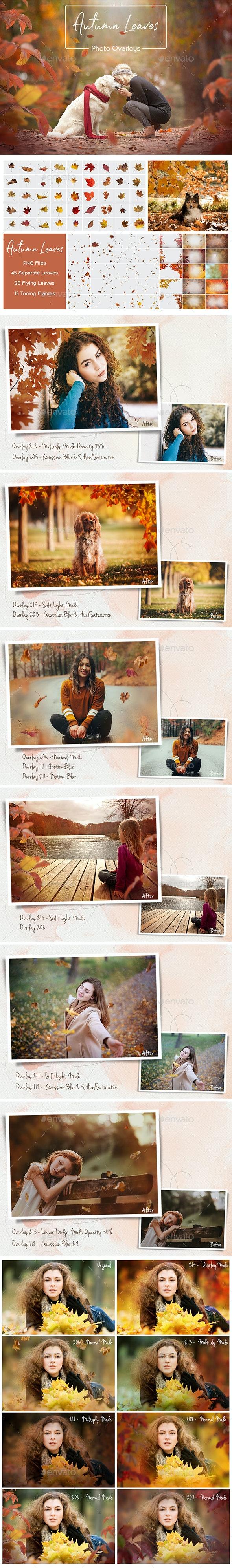 Autumn Leaves Overlays - Artistic Photo Templates
