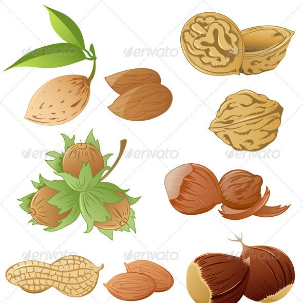 Set of Various Nuts