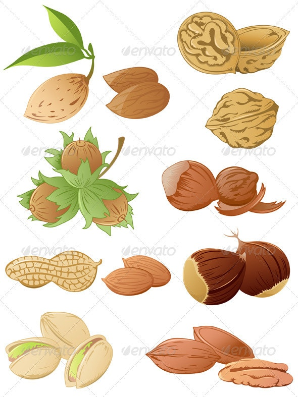 Set of Various Nuts - Food Objects