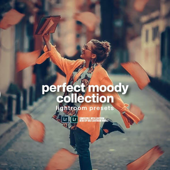 Moody Portraits Mobile + Desktop Collection Lightroom Presets