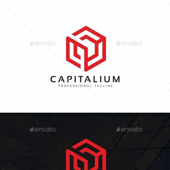 Capital Cube Logo