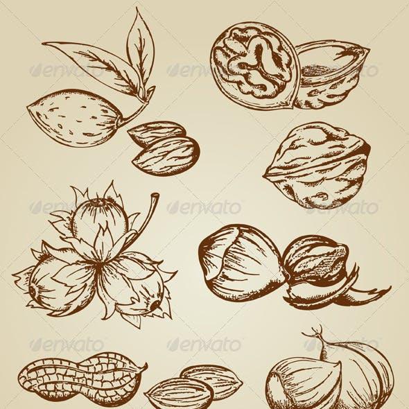 Set of Various Vintage Nuts