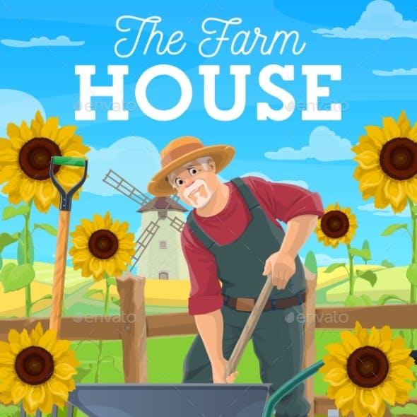 Farmer Fertilize Soil, Agriculture Farming Works