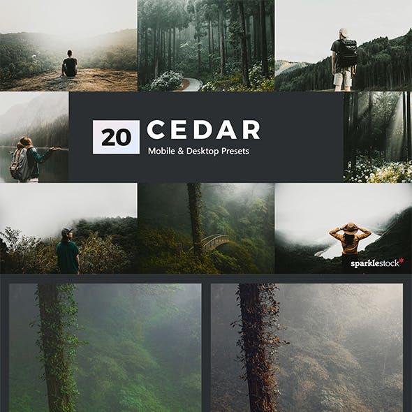 Cedar Lightroom Presets & LUTs