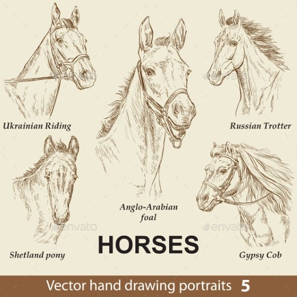 Set of Hand Drawing Horses 5