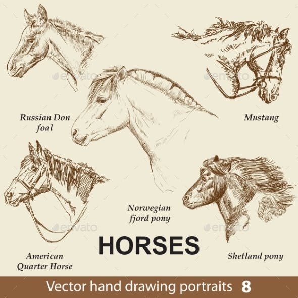Set of Hand Drawing Horses 8