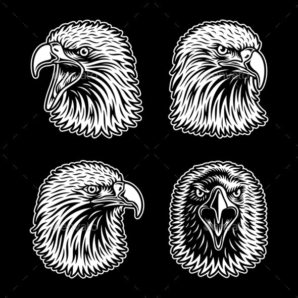 Eagle Head Collection on Black - Animals Characters