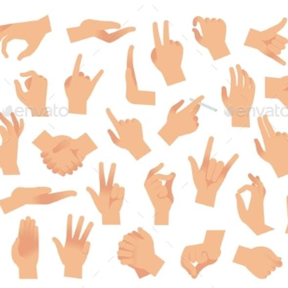 Hand Gestures. Various Arms, Human Hands, Ok