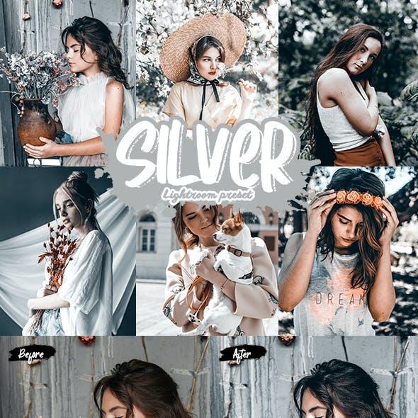 Silver Lightroom Presets