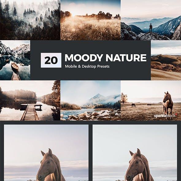 20 Moody Nature Lightroom Presets & LUTs
