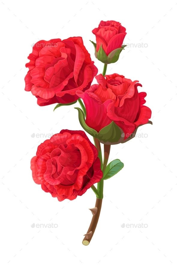 Vector Realistic Rose Flower Art - Flowers & Plants Nature