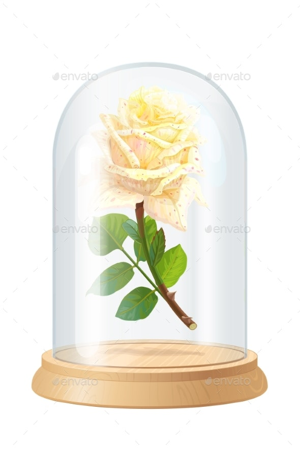 Vector White Rose Glass Flask - Flowers & Plants Nature