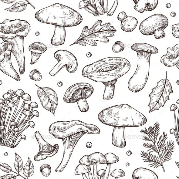 Autumn Forest Pattern. Sketch Mushrooms, Forest