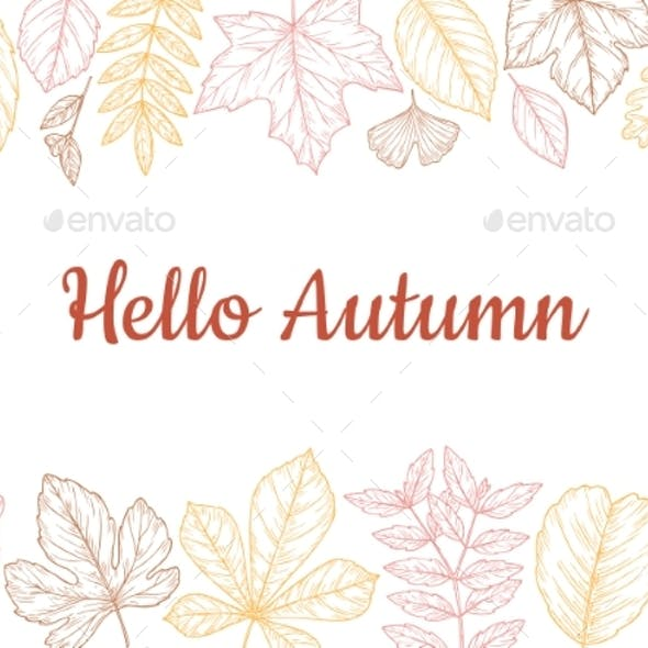 Sketch Autumn Leaves Background. Fall Leaf Banner
