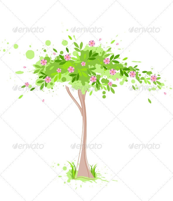 Green Spring Tree - Flowers & Plants Nature