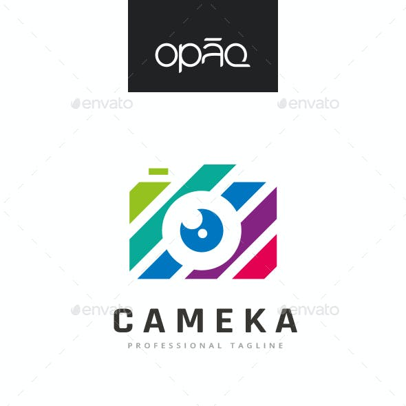 Camera Colorful Stripes Logo