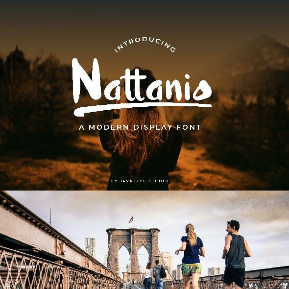 Nattanio A Modern Display Font