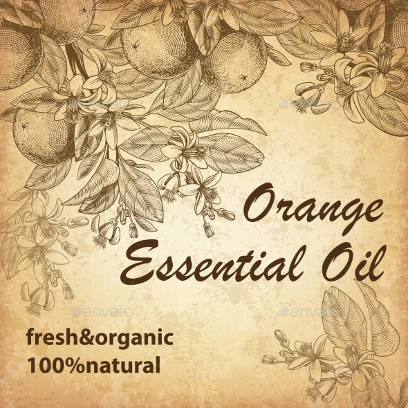 Engraved Orange Fruits with Orange Essential Oil