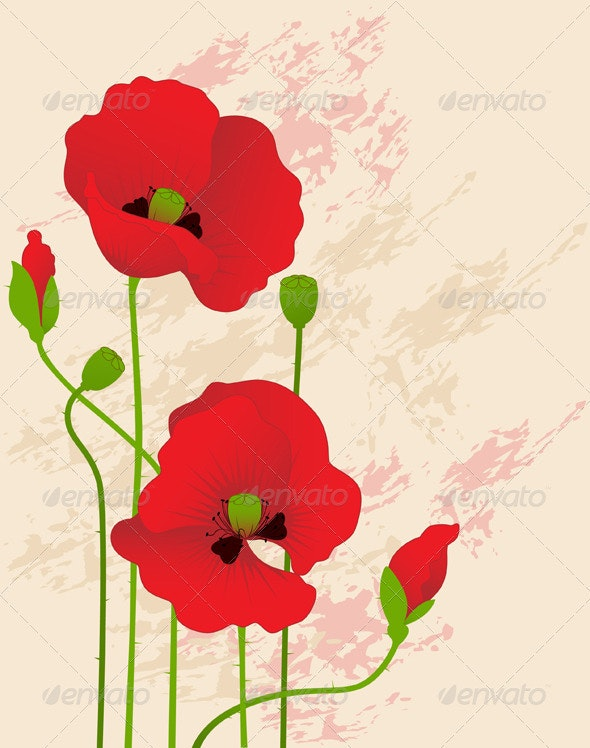 Floral Background with Red Poppies - Flowers & Plants Nature