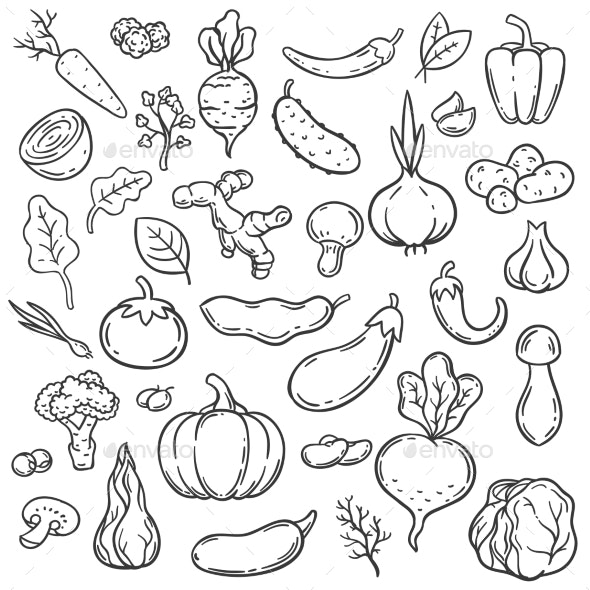 Doodle Vegetables - Food Objects
