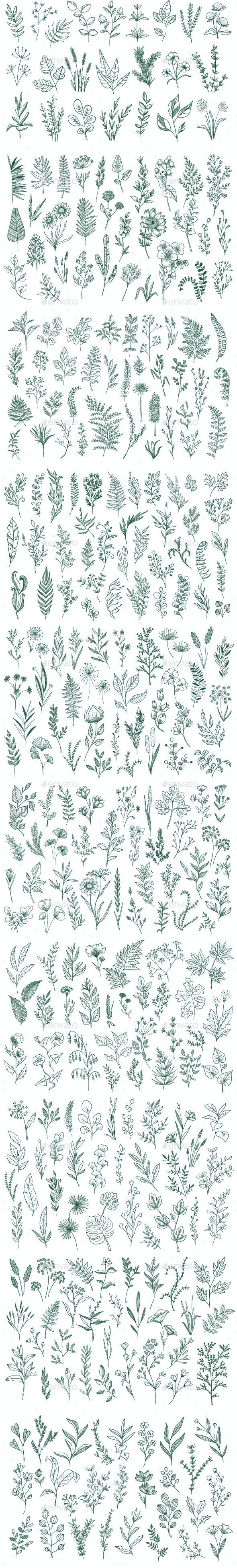 Hand Drawn Floral Decorative Element - Flowers & Plants Nature
